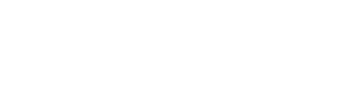 DWS_Logo_neg